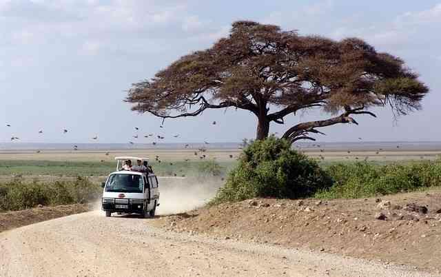 Kenya Eco-Safari