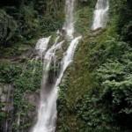Tamaraw Falls Philippines