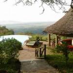 African Camera Safari
