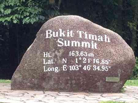 Bukit Timah rock